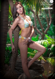 Sexy thai ladyboys bikini